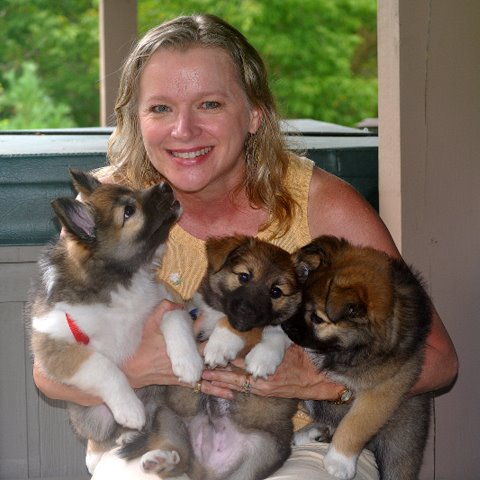 Susan with the pups
